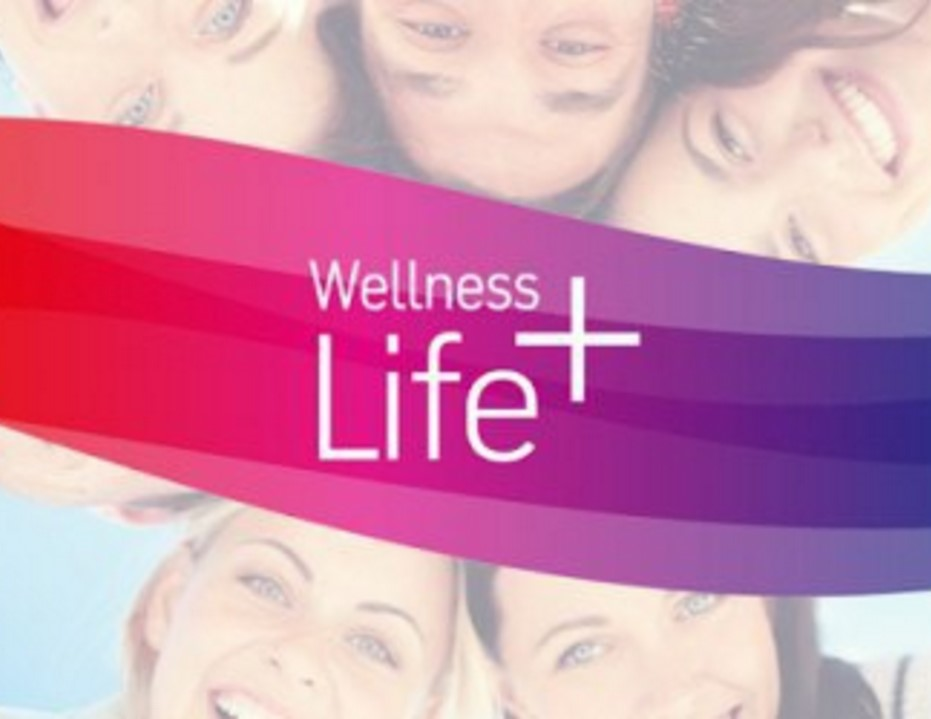 wellness program design Serving clients with government and corporate wellness program design, consulting and training that keeps employees healthy, productive, and engaged.